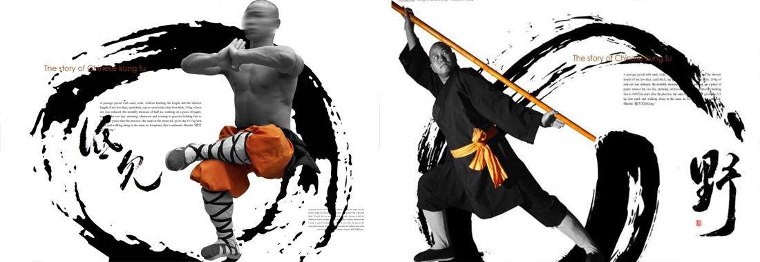 Songshan Shaolin Black-tiger Boxing by Chen Tongshan 2DVDs No.017